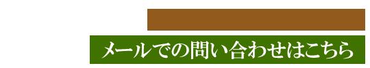 国際発酵食医膳協会