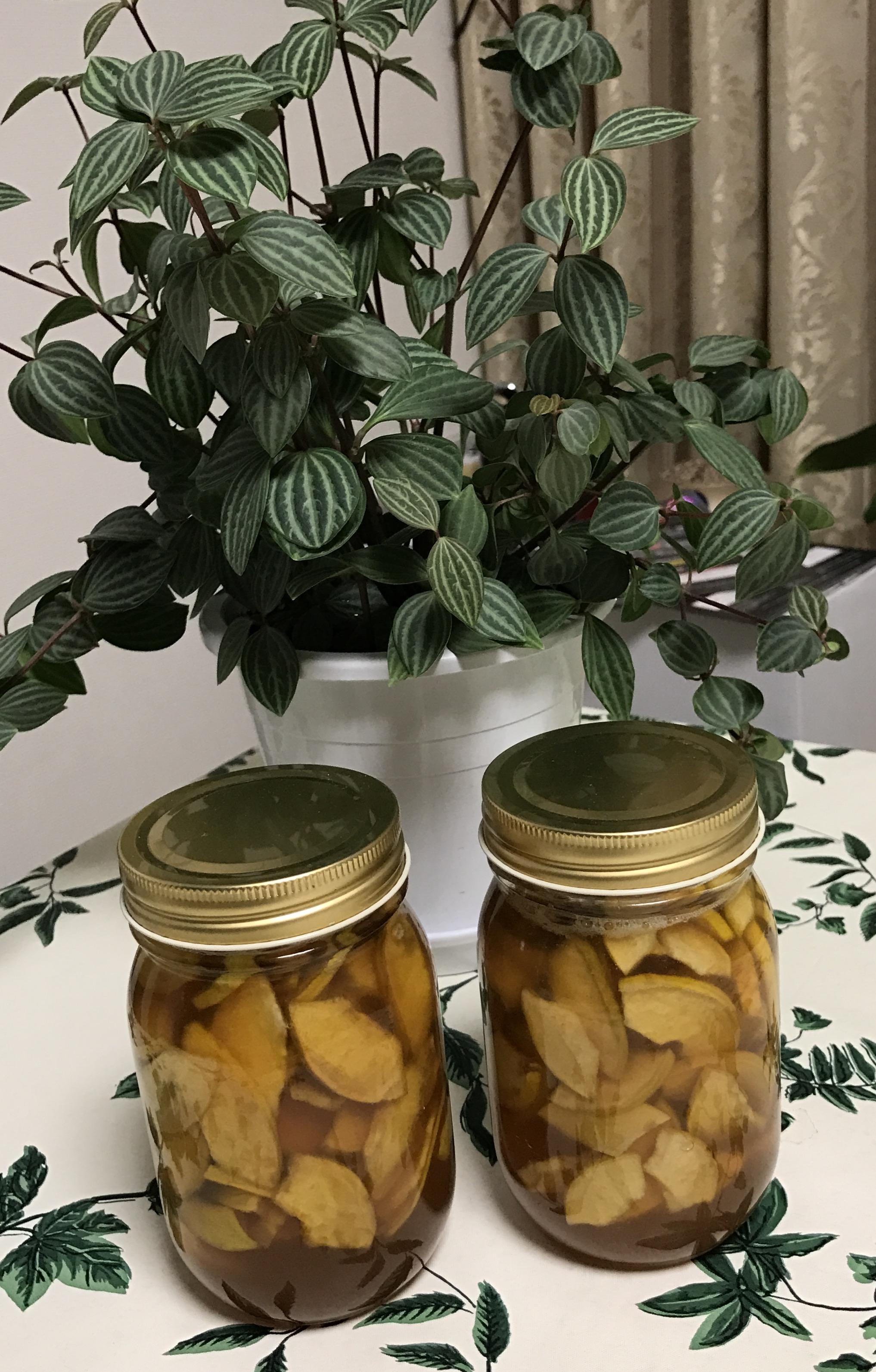 漬込み10日後の花梨ハチミツ